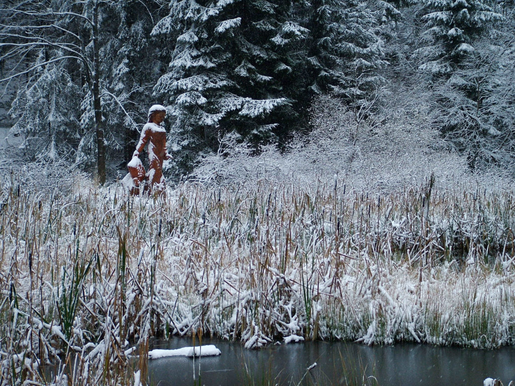 Frau-Holle-Teich am Hohen Meißne Winter