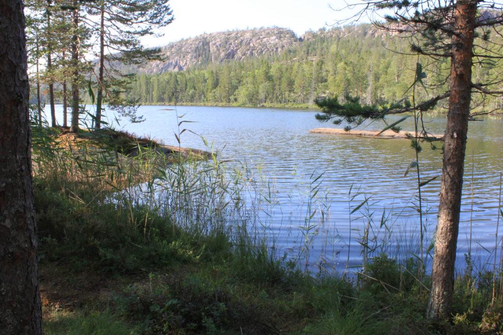 Tärnättvattnen im Skuleskogen Nationalparl